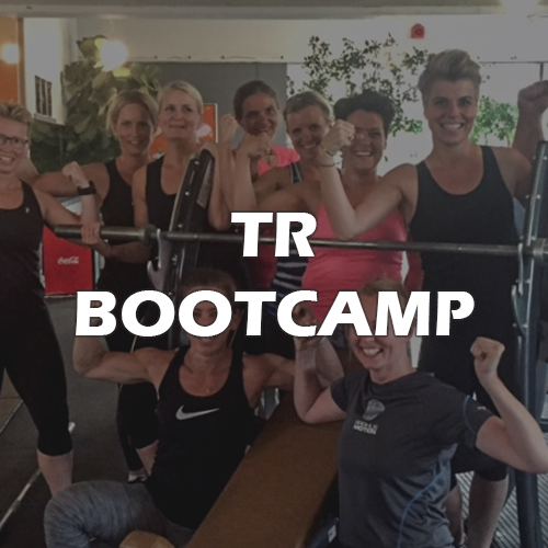 trine_bootcamp_text